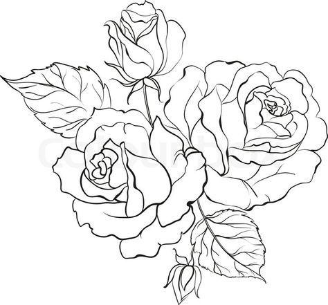 6930602 Bouquet Of Roses Jpg 800 745 Riscos Para Pintura