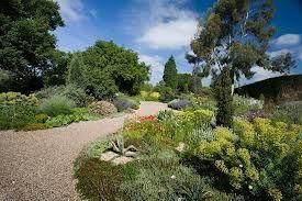 gravel garden -lovely idea