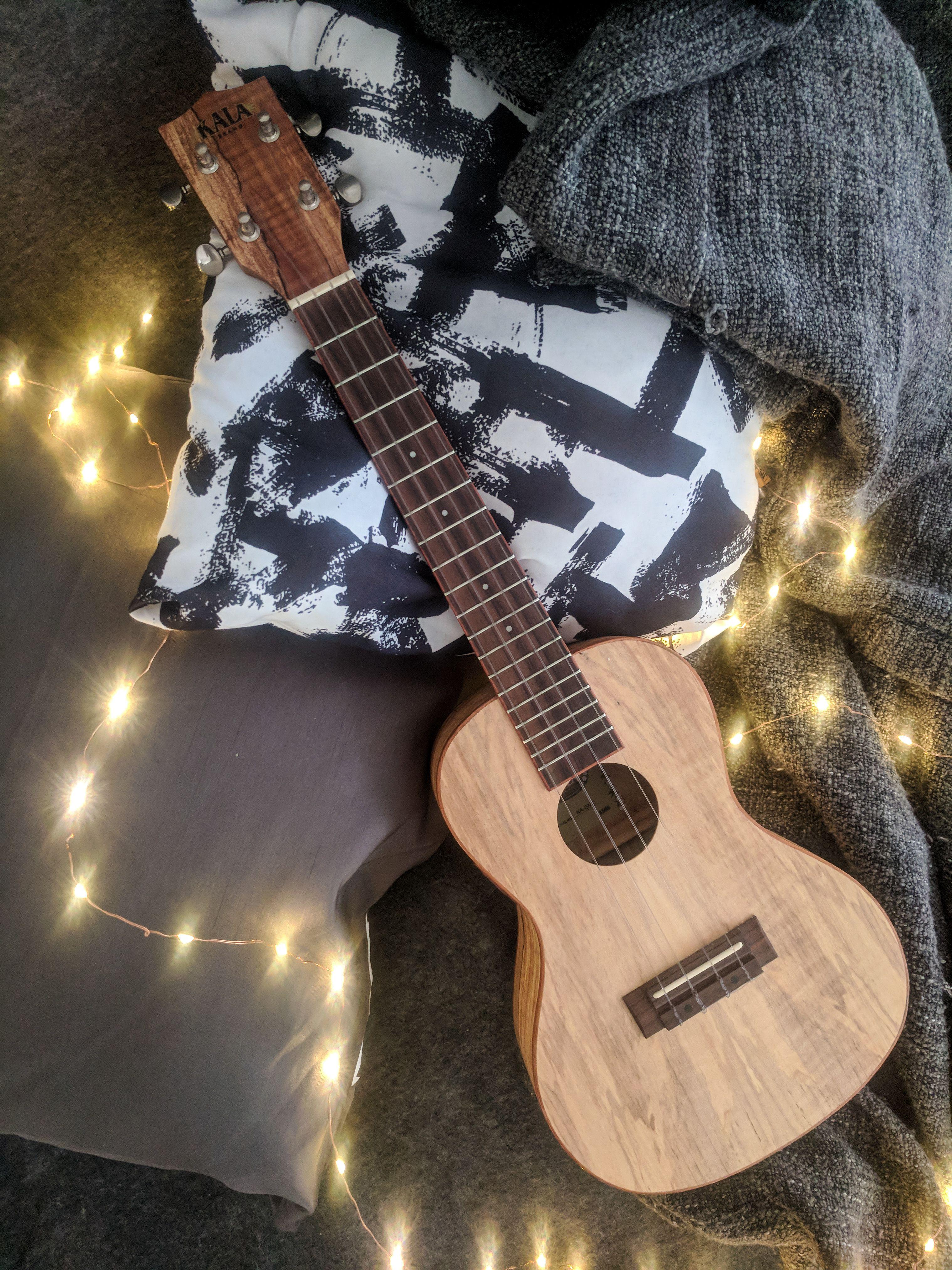 ONLINE UKULELE COURSE: Learn ukulele for a very affordable ...