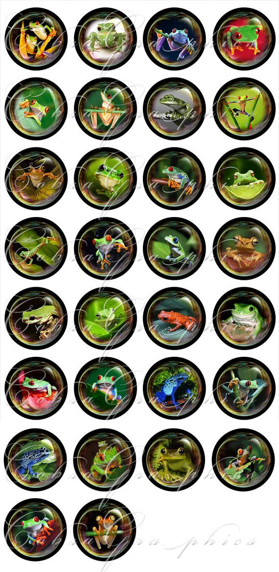 Frogs-n-Bubbles 20mm 18mm 16mm and 12mm circles by CobraGraphics