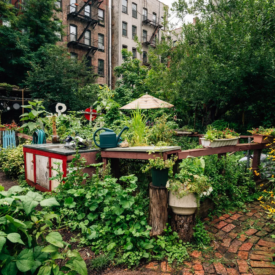 Can An Urban Agriculture Plan Cultivate NYC's Community