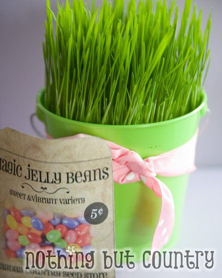 Easter gift ideas jelly beans beans and easter diy easter gift ideas the idea room negle Image collections