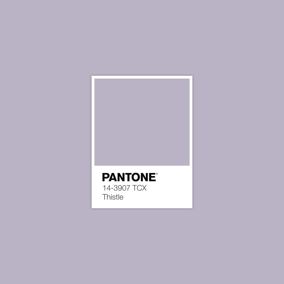 Thistle March 16 2018 Pantone Colour Palettes Pantone Color Vintage Color Schemes