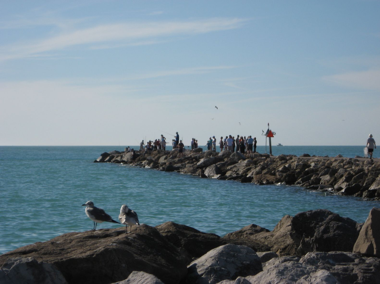 South Jetty Venice Florida Great Place To See Dolphins Spent A Lot Of Time Here
