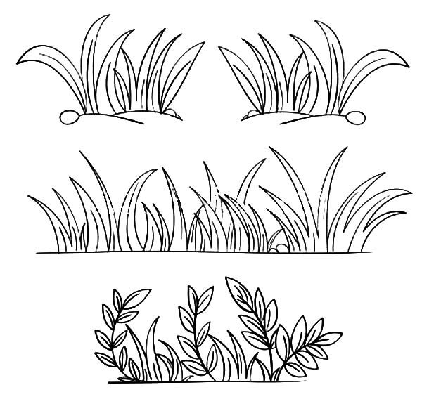 Grass Grass Grow So Well Coloring Pages Grass Drawing Grass Clipart Outline Drawings