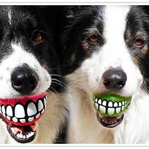 CaliDogz Rogz Grinz Dog Ball with Smile Gift Combo