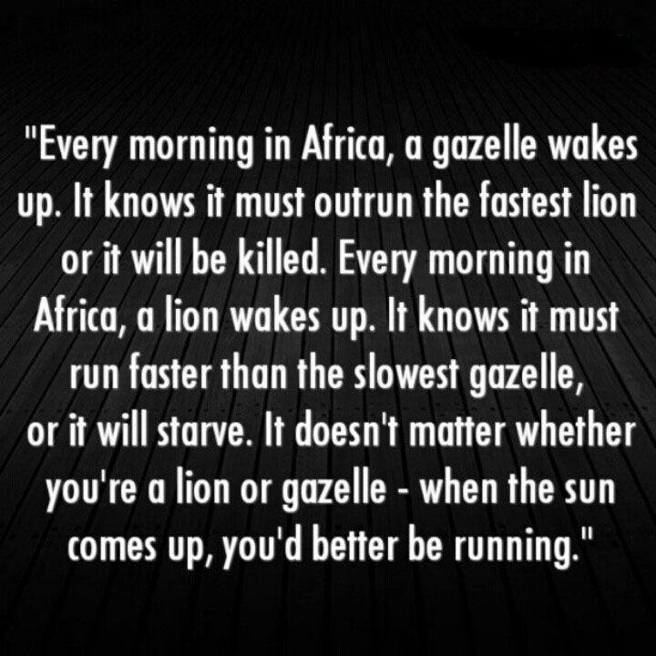Quote Every Morning In Africa A Gazelle Wades Up It Knows It