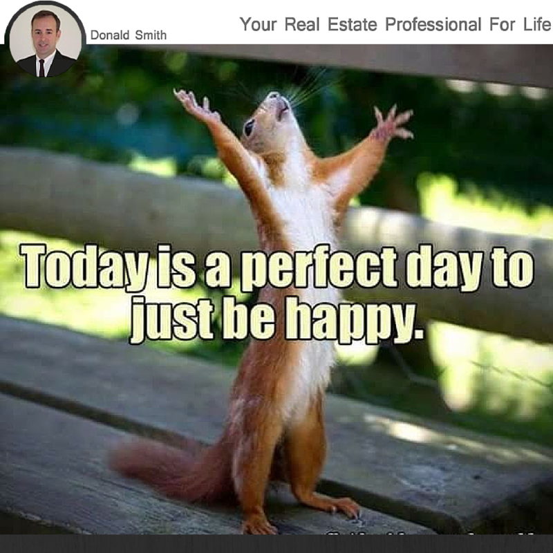 Today Is A Perfect Day To Be Happy Morning Quotes Funny Squirrel Funny Good Morning Funny