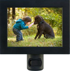 Create night lights from your pet photos.  #greatgifts #cool #nightlight #pets