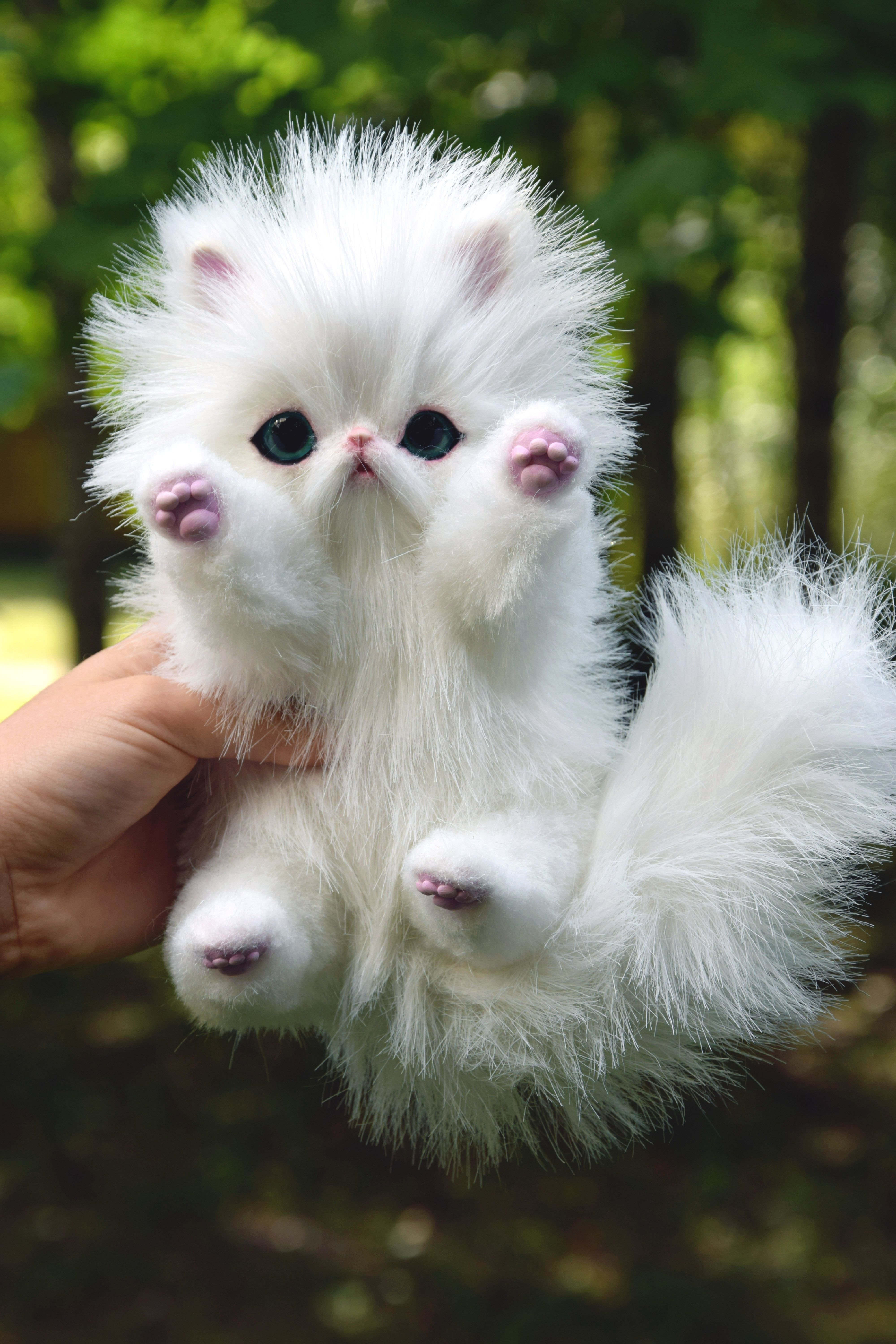 Persian Kitten And Fantasy Cats Toy By Monkeybusinesstoys Persian Kittens Persian Kittens For Sale Pet Toys