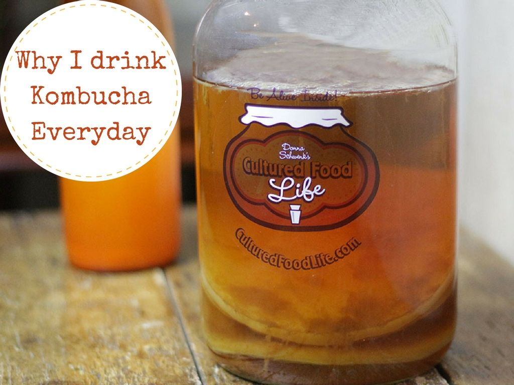 Why I Drink Kombucha Every Day Kombucha Food Drinks