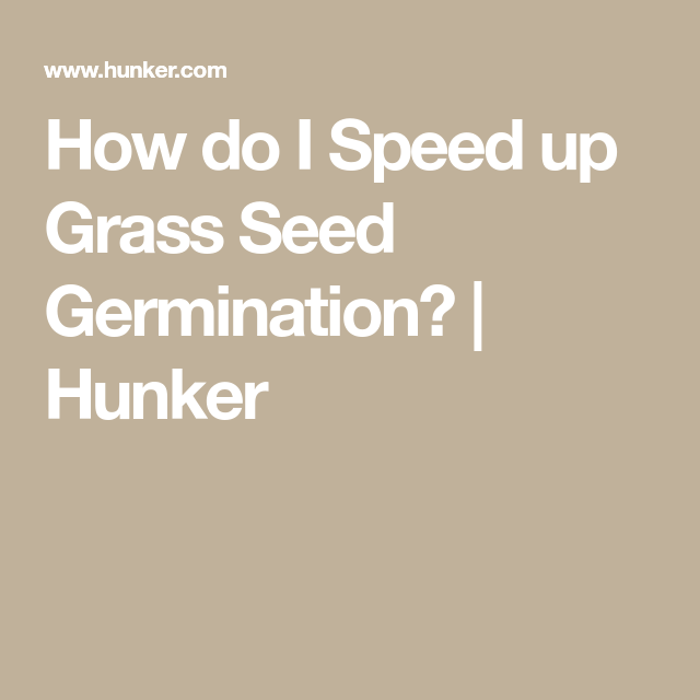 How Do I Speed Up Grass Seed Germination Hunker Seed Germination Germination Grass Seed