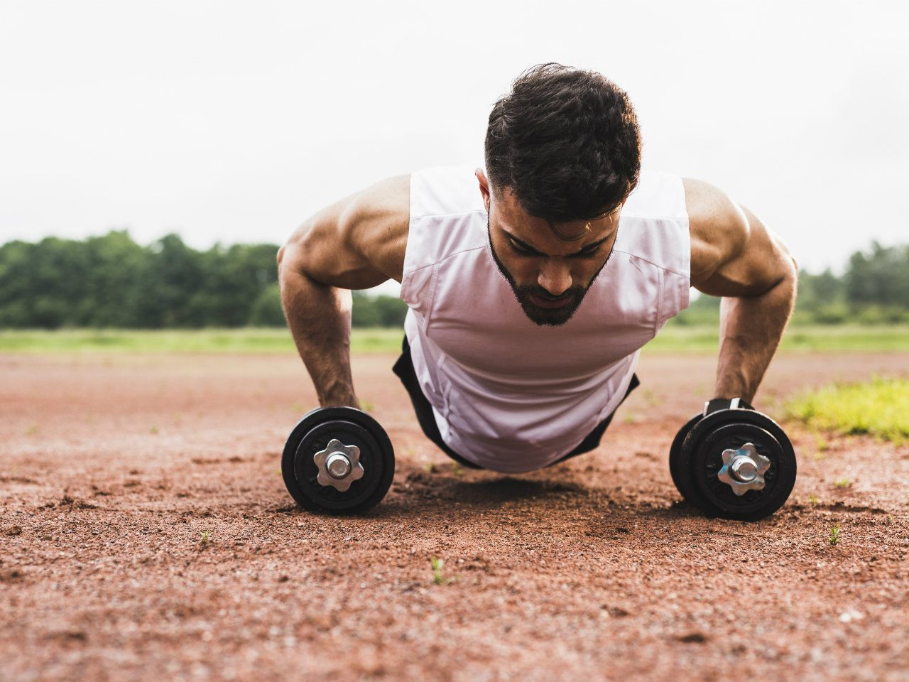 The 30-Minute Dumbbell Workout Program to Build Muscle Dumbbell workout Dumbbell workout