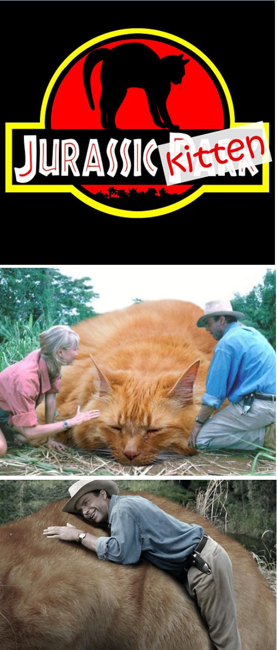 Jurassic Kitten!!