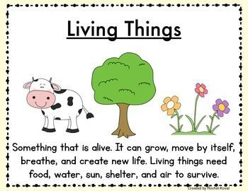 Living And Nonliving Exploration Unit Living And Nonliving Nonliving The Unit