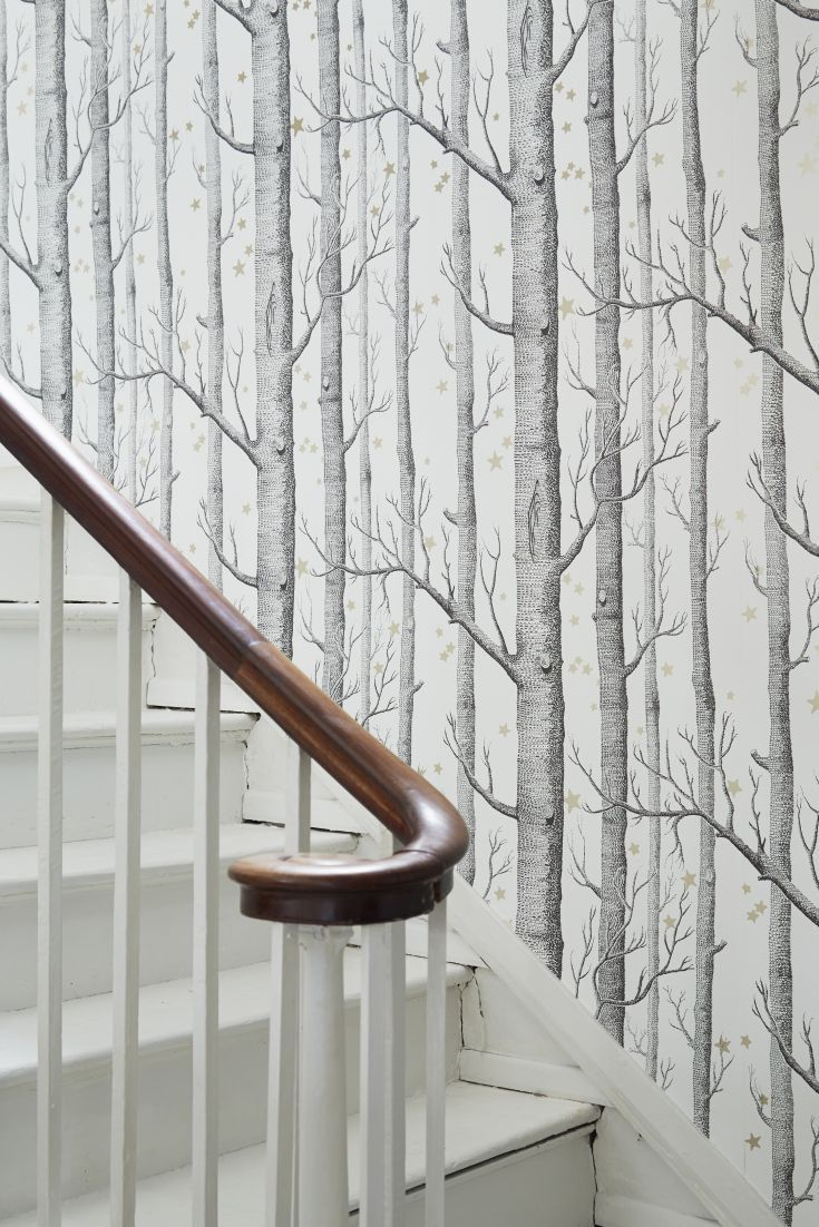 Wallpaper on hallway  Woods and Stars Wallpaper   Ma maison  Pinterest