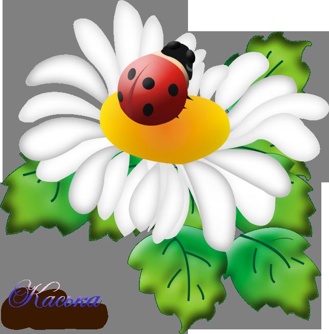 Картинки цветов для оформления в детском саду, иринка