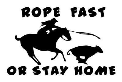 Cowboy Bucking Horse Stained Glass Decal Rodeo Western Window Car Home Sticker