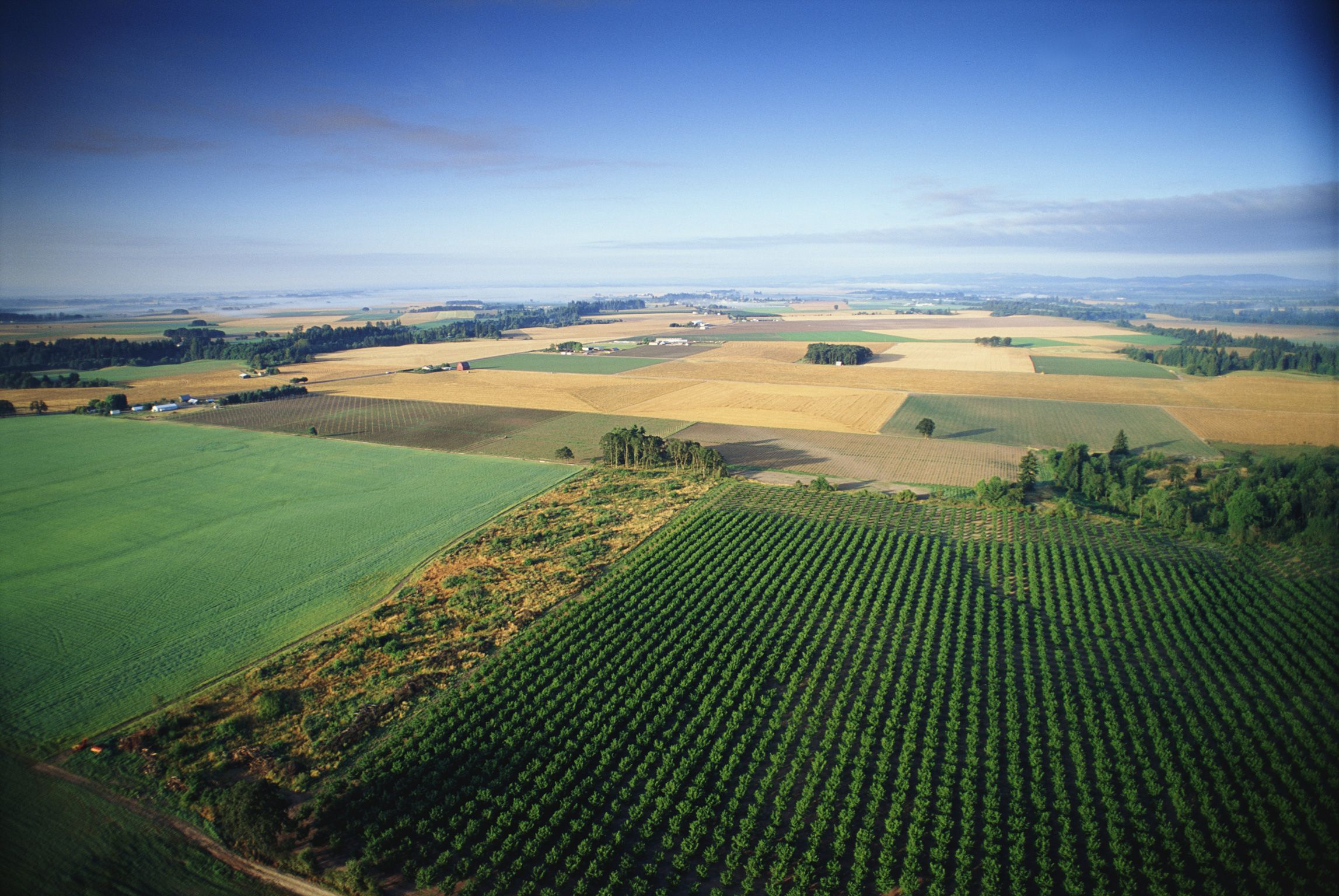 Record number of farmers, ranchers certified under Farm