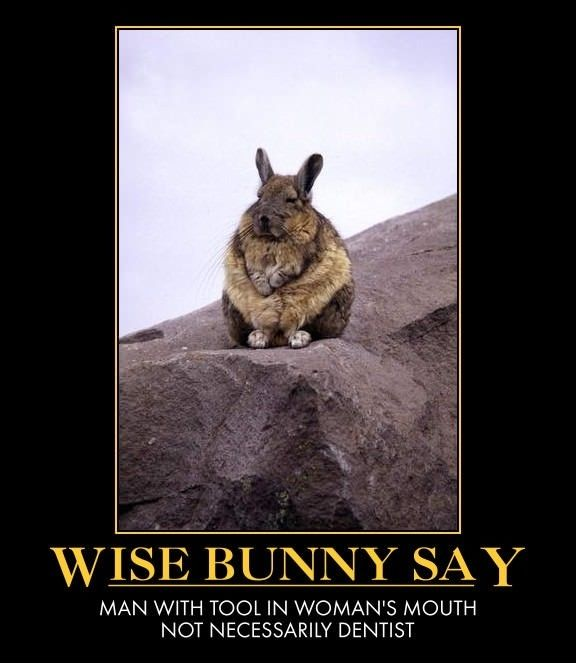 Some wise words (With images) | Wise words, Make me laugh ...
