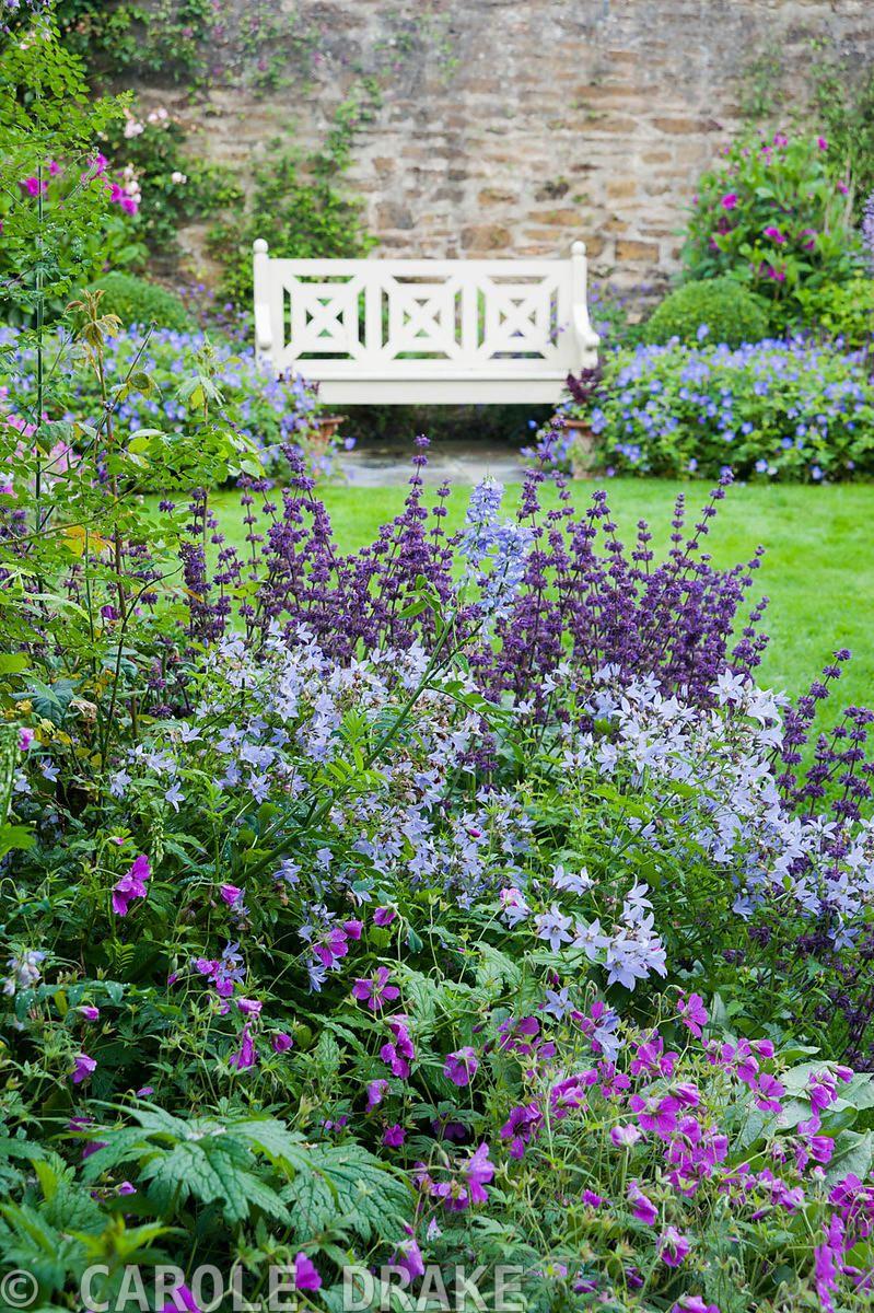 Beautiful flower garden front garden plants pinterest
