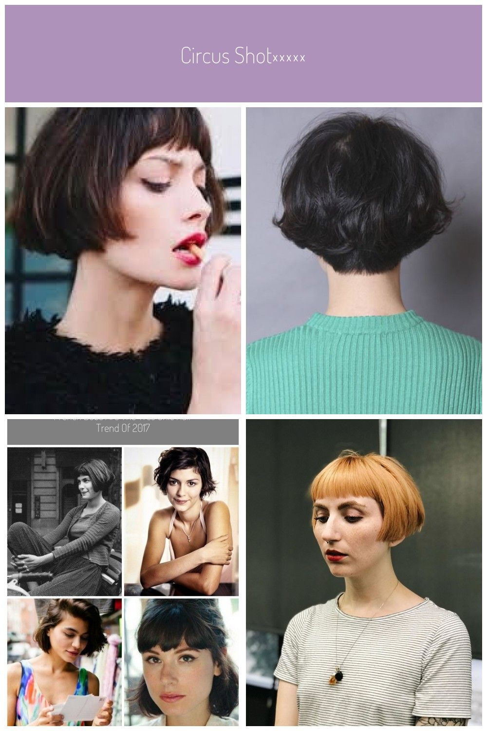 Image result for chin length bob with bangs #french bob amelie in