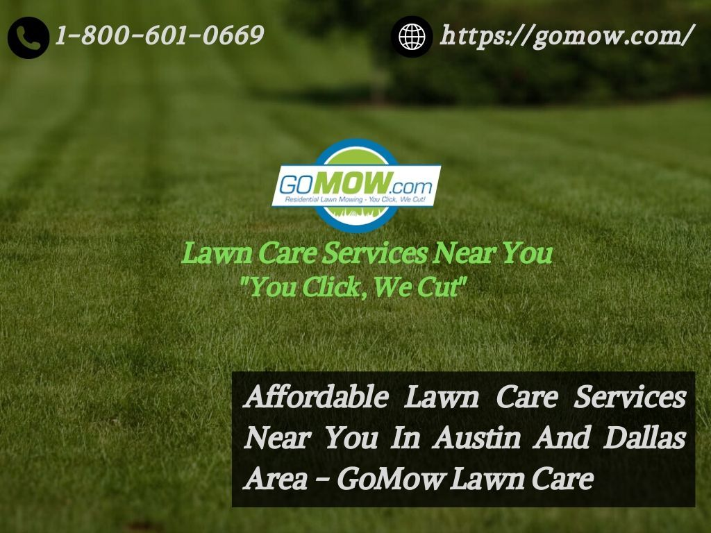 Lawn Care Services Near Me, Affordable Lawn Service in TX