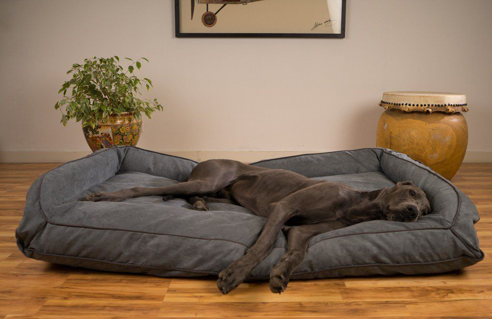 K9 Ballistics Large Bed For Great Danes Divan Dlya Sobak