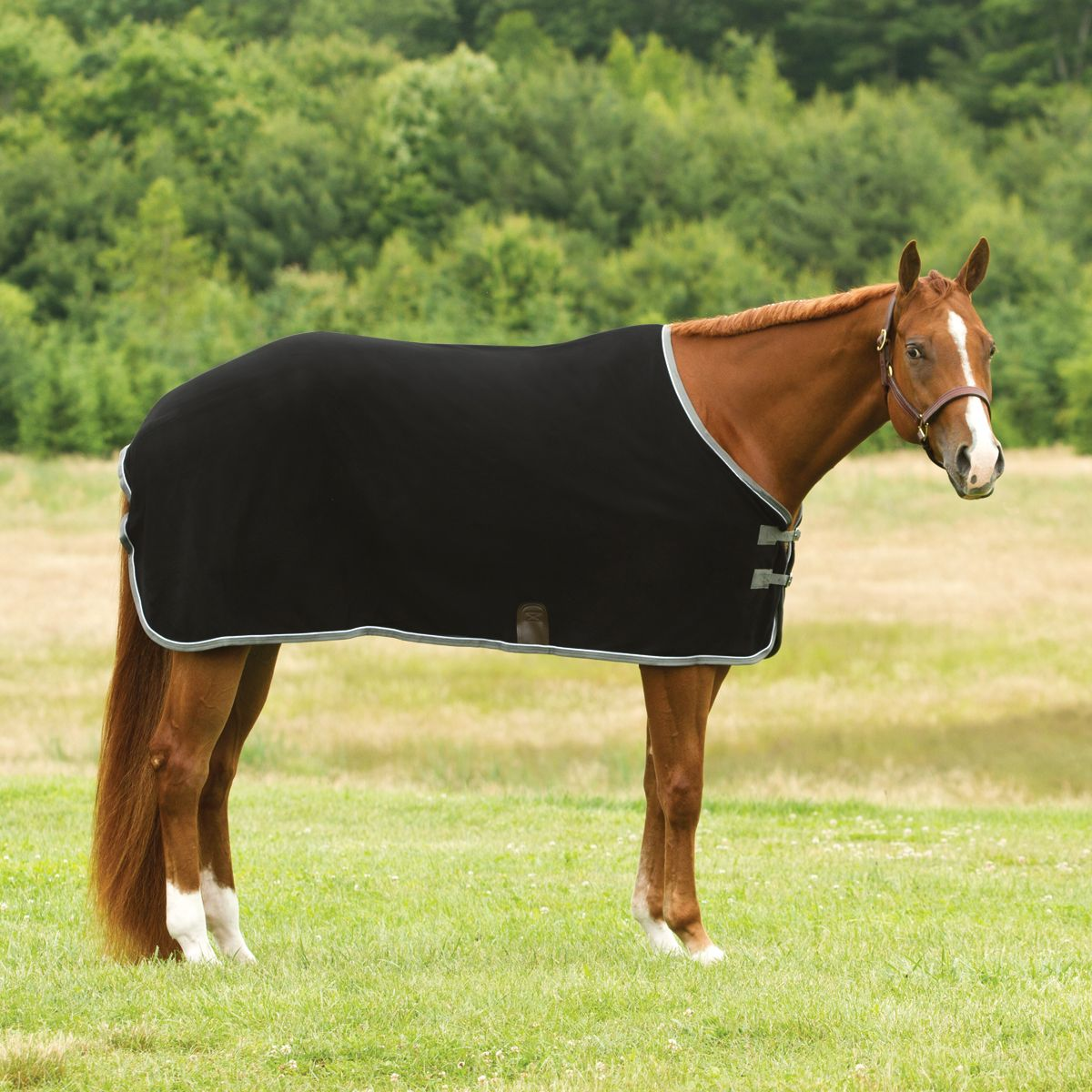 Smartpak Cooler Black Silver Horses Smartpak Equine Smartpak