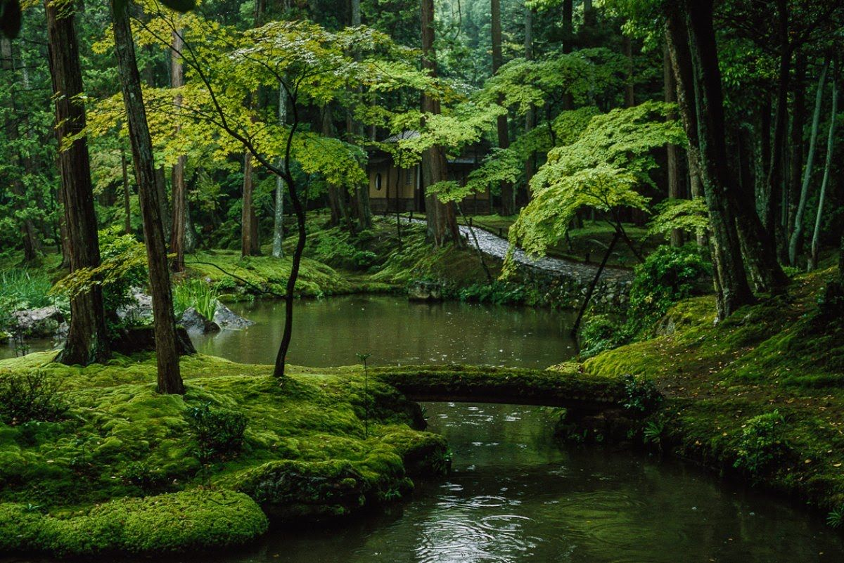 BEGIN Japanology - Moss