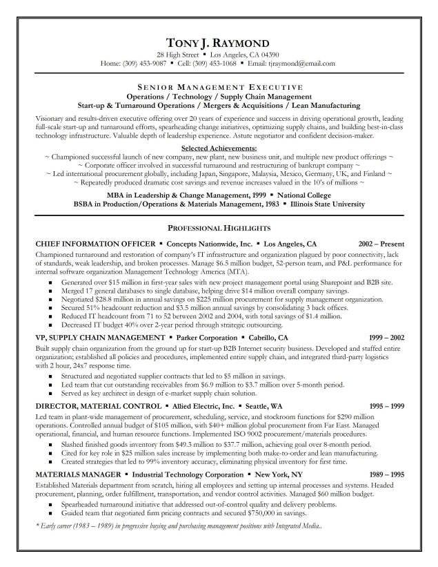 executive summary resume writing sample example with Home Design - example professional summary