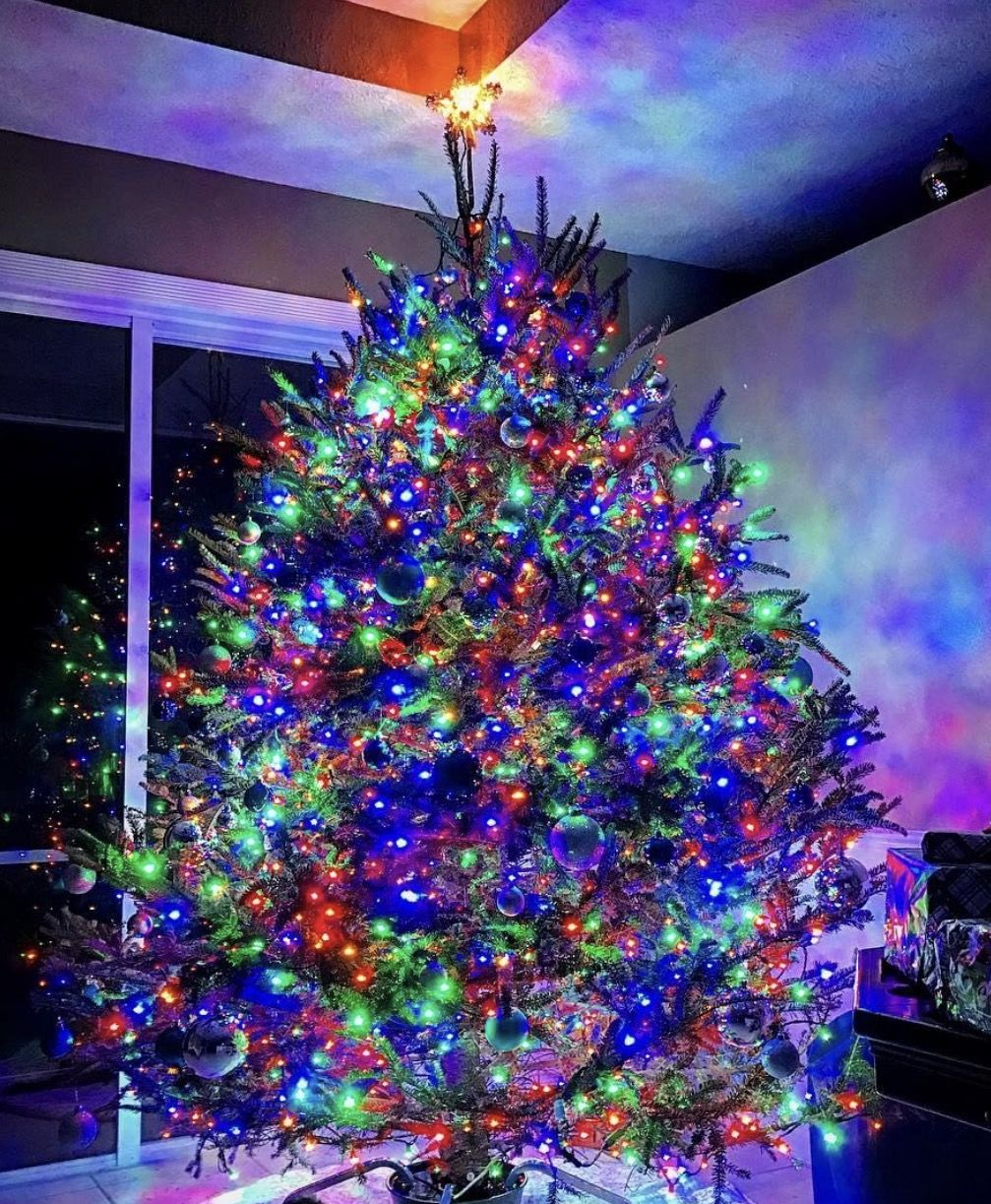 How To String Lights On A Christmas Tree Adorable 70 Bulb 5Mm Led String Mini Lights  Multicolor  Live Christmas Decorating Inspiration