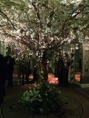 Festa veneziana a New York per Save Venice. Tutte le foto su GothaNews.com