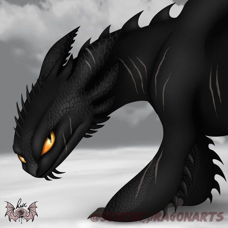 Pin By Peril On Night Fury X Light Fury How Train Your Dragon Dragon Artwork Httyd Dragons