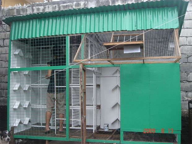 Image Result For Pigeon Loft Plans Pigeon Loft Loft Plan