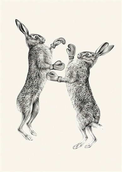 Image result for boxing hares drawing
