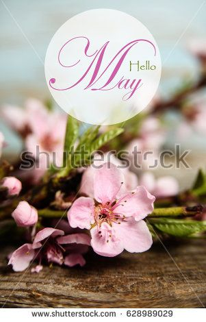 Hello May Vertical Banner With Blooming Flowers Blooming Flowers