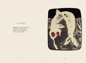 http://illustrations.oliviercharpentier.com/files/gimgs/th-14_LE DAUPHIN BDEF.jpg