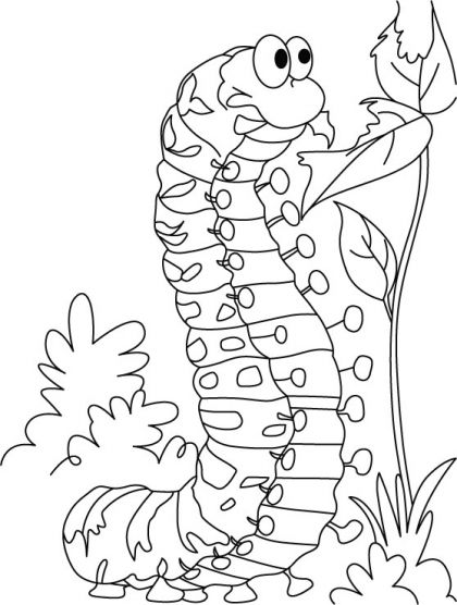 caterpillars and butterflies coloring pages | Caterpillar satisfying hunger coloring pages | Download ...