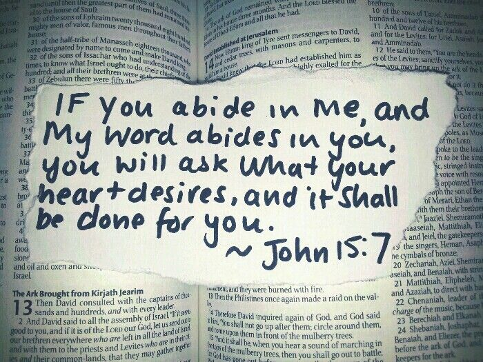 """""""Can you honestly say that you have spent your years as a Christian abiding in God's Word, and allowing it to abide in you? If the answer is no, I encourage you to take action."""