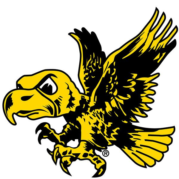 Iowa hawkeyes flyin 39 herky decal herky the hawk for Iowa hawkeye decor