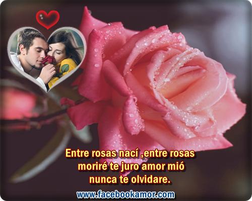 Postales con frases románticas para facebook