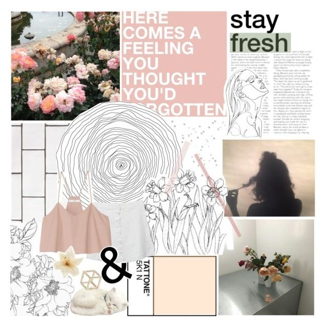 """""""we'll carry on ♡"""" by blvckparade ❤ liked on Polyvore featuring WALL, TIBI, Topshop and Again"""
