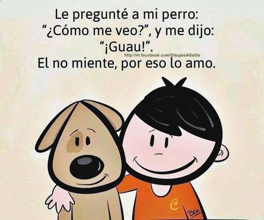Gifs Mas Graciosos Encesta Sin Parar Jokes For Kids Cute Comics Spanish Jokes
