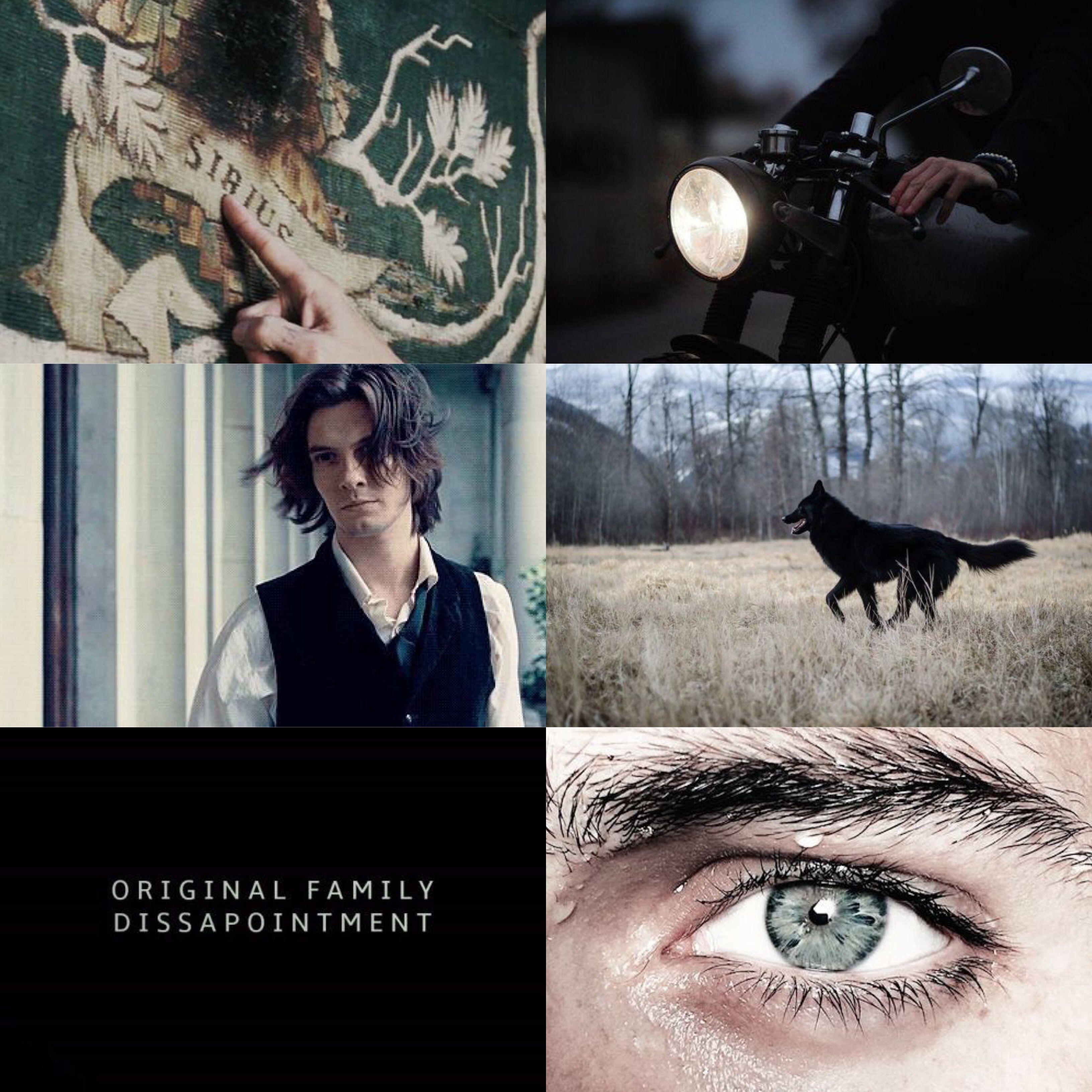 Sirius Black Ben Barnes Aesthetic Young Sirius Black Ben Barnes Sirius Ben Barnes