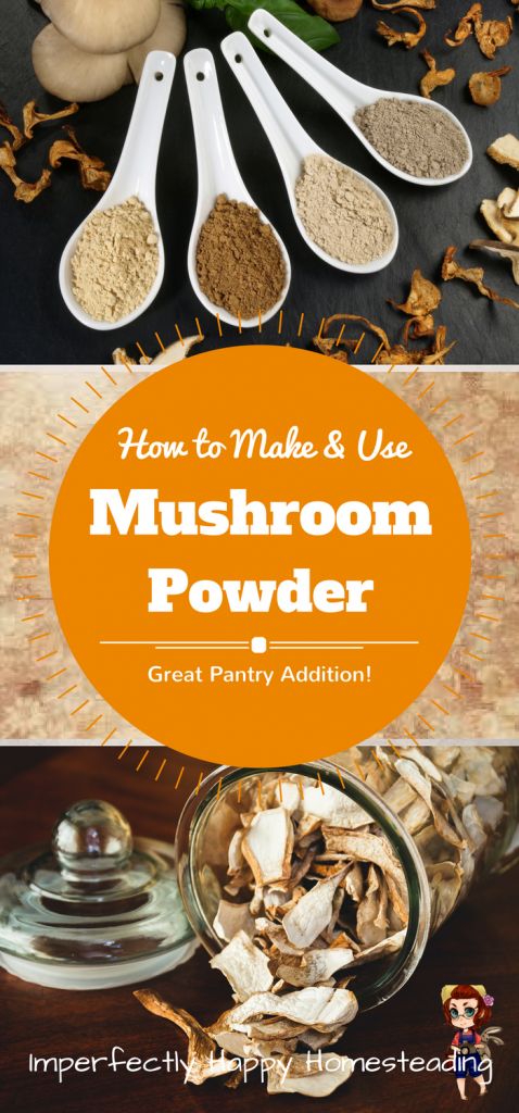 How to Make and Use Mushroom Powder - a Wonderful Addition to Your Pantry and Recipes!: