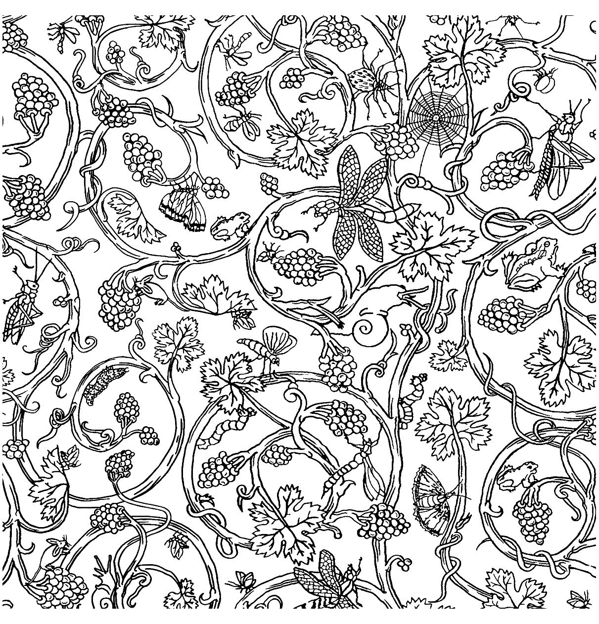 Free coloring page painted-paper-insects-vivienne-westwood. Patterns ...
