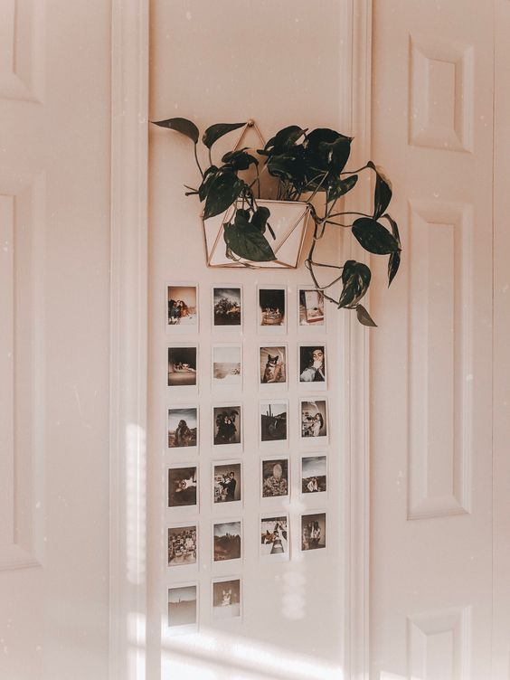 Photo of 5 fun ways to decorate your off-campus apartment – Society19 – …