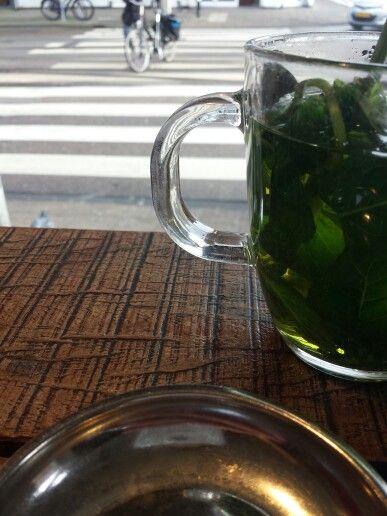 Tea & Coffee | Muntthee en naar mensen kijken maakt gelukkig