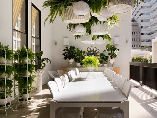 Sibella Court The Ivy  Balcony  Pinterest  Parlour Ferns And Extraordinary Private Room Dining Sydney Design Inspiration